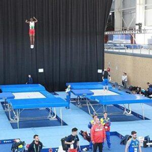Olympic trampoline exercise platform